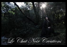 Gothic Snow White_III by LeChatNoirCreations
