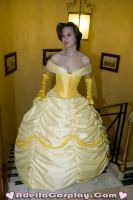 Beauty and the Beast Cosplay by Adella