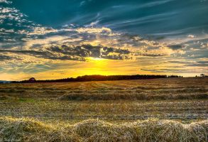 HDR Sunset Harvest by TonyClem