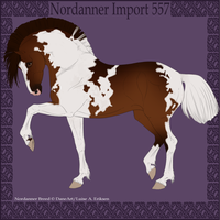 Nordanner Import 557 by Cloudrunner64