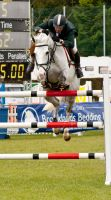 Jumping stock 51 by Kennelwood-Stock