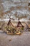 Old bicycle by skibott