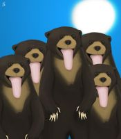 March of the Sun Bears by R3YNO