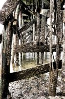 Abandoned Pier I by basseca