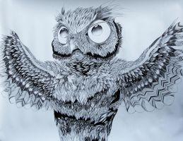 KING OWL by ClaraBacou