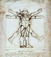 Vitruvian Turtle by 0Indiantiger0