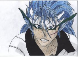 Grimmjow in colour by Quinninism