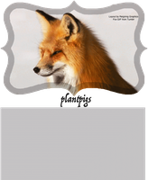 Fox GIF layout by Reigning-Graphics
