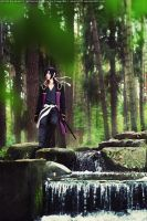 Way of the samurai by MargoIIIa