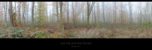 Just me and the forrest by MBKKR