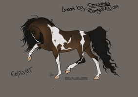 Foal Design Eternity X Ombre by RvS-RiverineStables