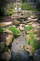 The Duck Pond by Richteralan