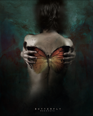 Butterfly by Gedogfx
