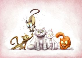 Family cats by joulester