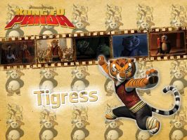 Tigress | Kung Fu Panda -  Wallpaper by Howie62