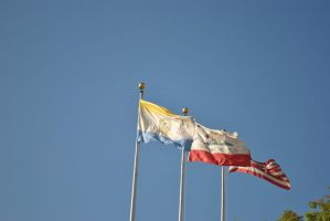 Flags by Tithos