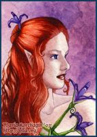 ACEO 14 : Iris by Maria-Ylla