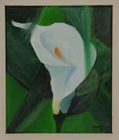Abstract Calla Lily by astraldreamer