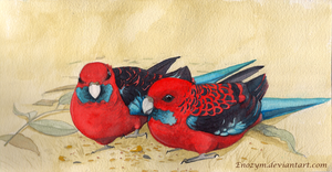 Crimson Rosellas by H-SWilliams