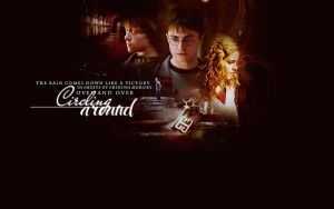 harry potter wallpaper4 by mia47