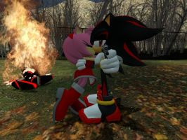 Shadamy Don't mess with amy or else by GmodSpartan
