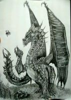 Dragon (Final) by ChaoticTendencies