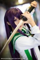 high school of the dead Saeko1 by shuichimeryl