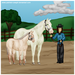 Willie and Malibu Dilute Halter by painted-cowgirl