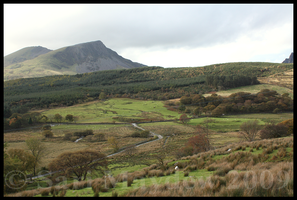 Foothills of Snowdon by kittywinter