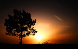 Sunrise by hquer