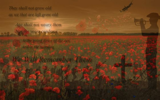 Remembrance by lady-allyria2010