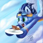 Soarin Button by Tsitra360