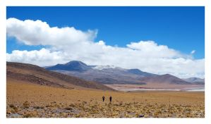 Altiplano : Off the beaten track by gastonnerie