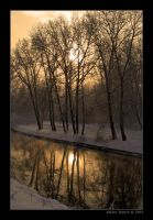 Winter In Gold by Frider