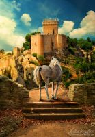 The Guard of the Castle by plutoplus1