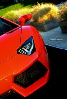 Aventador by C0LL1