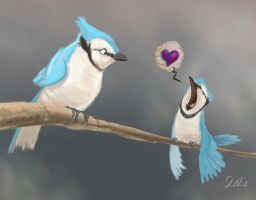 Valentine's Day 2012 by feeves
