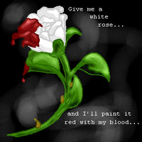 Give me a white rose by tamarii