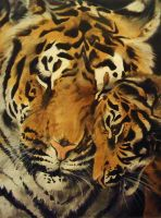 Tiger and Cub by SkiAr7sy