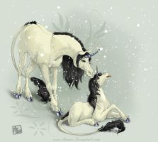 Unicorns in the Snow by Aomori