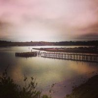 Bodega Bay by Mad-Twatter