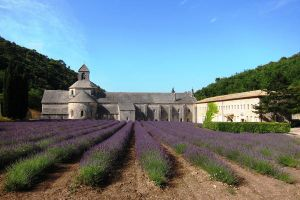 Senanque Abbaye by elodie50a