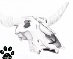 Dead Meat - Cow Skull by NodLupetianWolf
