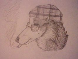 Stoner Collie by Super-Chey