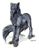 Black wolf by Lyanti