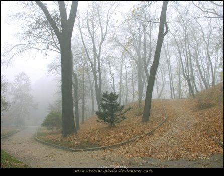 Mystic Fog by ukraine-photo