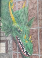 Dragon lair Door 1 by ShelandryStudio