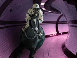 PICCADILLY LINE STAKES by martiuk