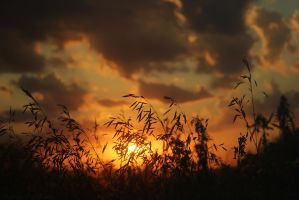 September Prairie Sunset by relisabby