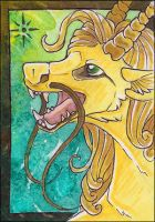 ACEO - Sundance by awaicu